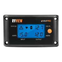 12V Battery Monitor RVView