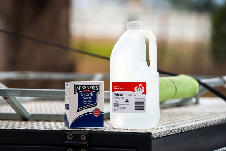 bicarb soda and vinegar could clean your RV water tanks